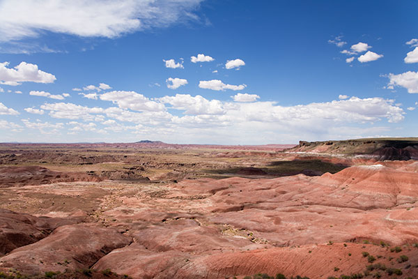 View from Lacey Point, Painted Desert, Petrified Forest National Park, Arizona