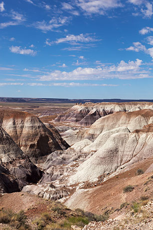 Scene along Blue Forest Trail, Petrified Forest National Park, Arizona