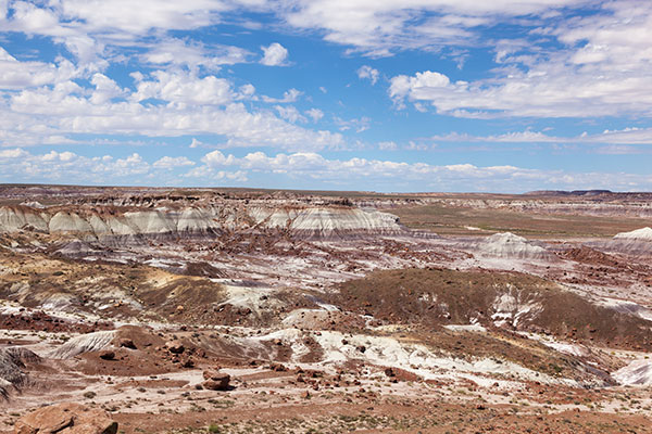 Jasper Forest from Overlook, Petrified Forest National Park, Arizona